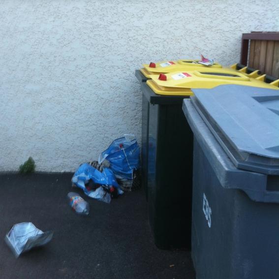 local-poubelles-propreté-urbaine-SDE